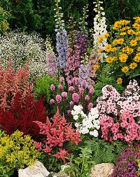 Цветы в бийске наши цены вас приятно